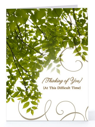 Greeting cards for hospice everplans regina holliday whose husband died of cancer discovered the need for such a product after experiencing hospice while her husband was dying m4hsunfo