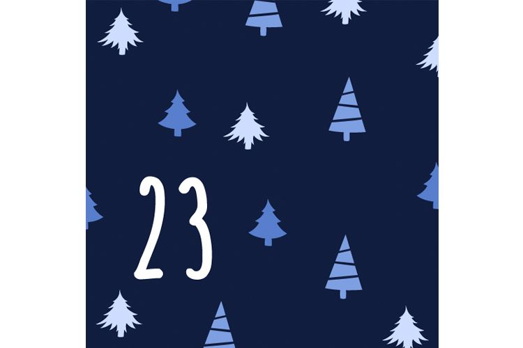 advent day 23