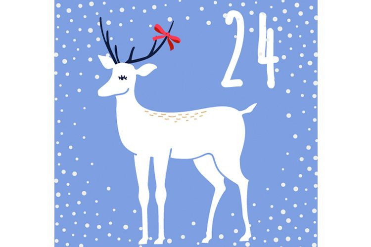 advent day 24