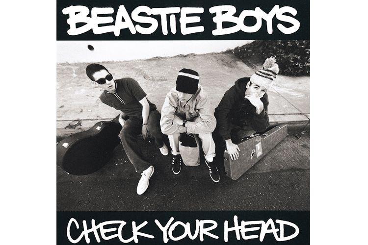 beastie boys check your head album cover
