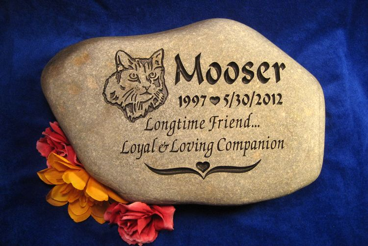 rainbow bridge pet memorial rock