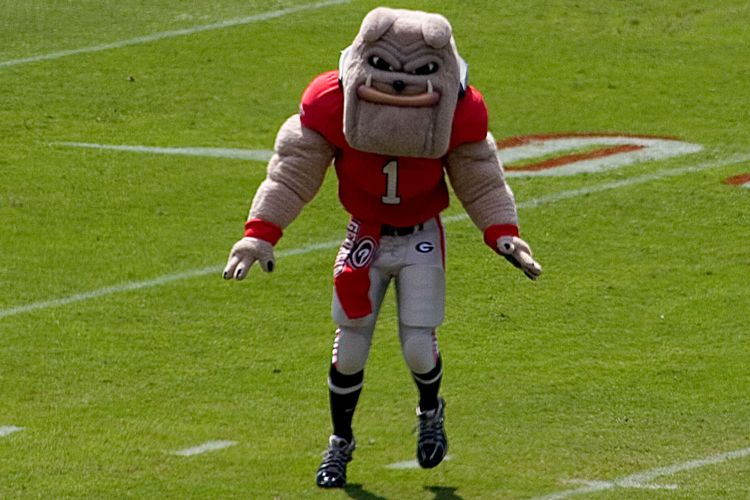 university of georgia mascot hairy dawg