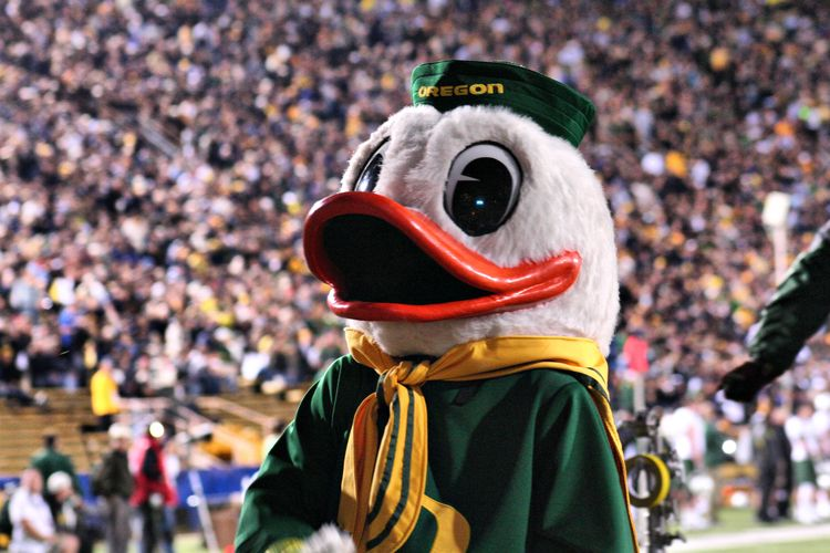 university of oregon mascot