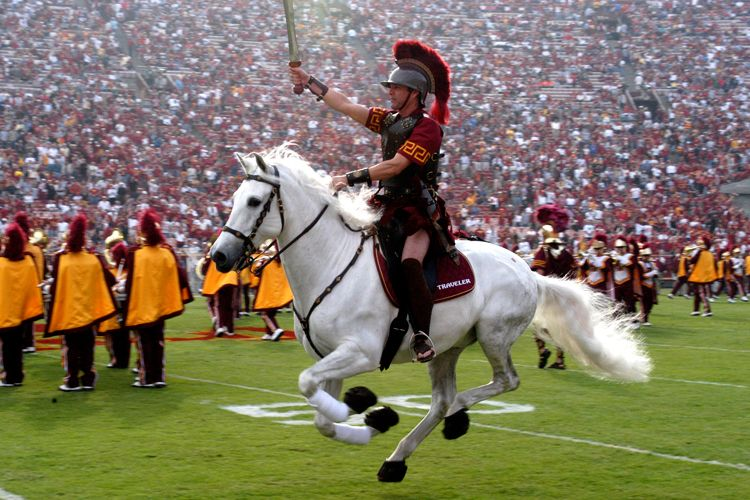 university of southern california mascot