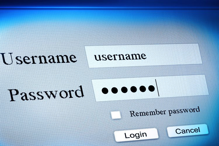 username password fields