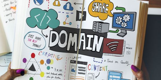 domains and web hosting