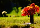 How Much Does It Cost To Be Buried In A Cemetery?