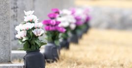 cemetery headstones and flowers
